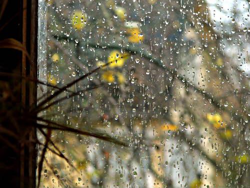 Грустные стихи про осень, дождь