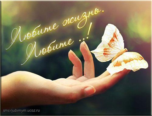 Любите жизнь такой, как есть ! - Позитивные стихи о жизни