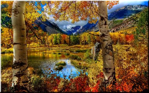 Осень. Пейзаж. Кругом пестреет лес зеленый; Уже румянит осень клены ... Автор А.Н. Майков
