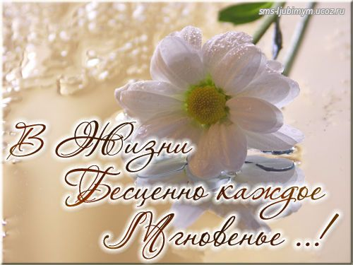 В Жизни бесценно каждое Мгновенье ..!