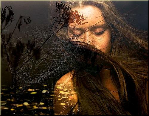 В твоих глазах искала я рассвет ... Автор Н. Самкова